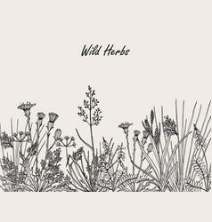 Floral background with hand drawn wild flowers vector