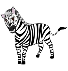 Funny Cartoon Zebra vector image