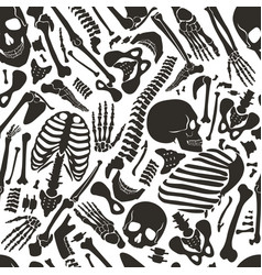 Human skeleton seamless pattern with skulls vector
