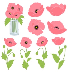 Pink Poppies vector image