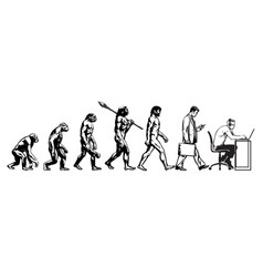 theory evolution man vector image
