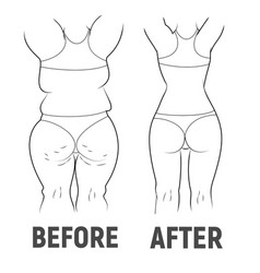result before and after sport fat and thin vector image