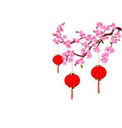 chinese new year sakura and red lights cherry vector image