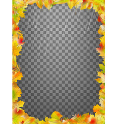 frame with colorful autumn leaves eps 10 vector image