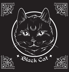 Hand drawn black cat with moon on his forehead vector