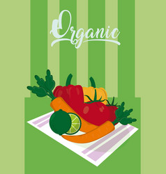 Organic vegetables on dish vector