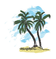 palm trees and blue sky vector image