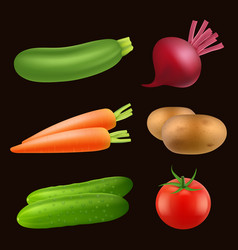 vegetables food realistic fresh vegan healthy vector image