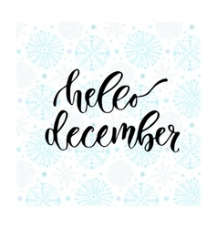 Hand drawn lettering Hello december vector image vector image