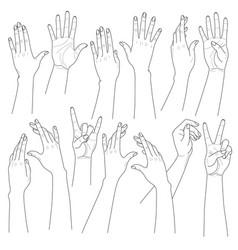 woman hands set vector image vector image