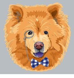 hipster dog chow-chow vector image vector image