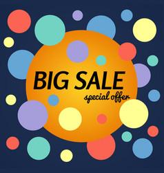 big sale special offer banner vector image
