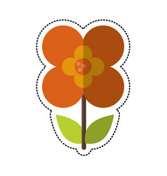 Cartoon buttercup flower natural vector