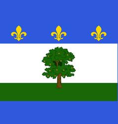 Flag of privas in ardeche of auvergne-rhone-alpes vector