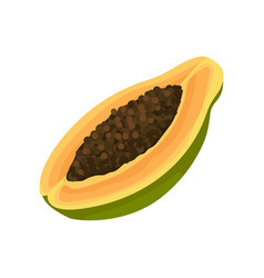 half of raw papaya with brown seeds inside vector image