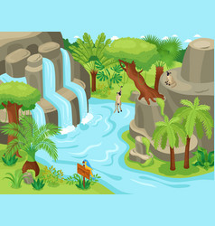 Isometric jungle waterfall composition vector