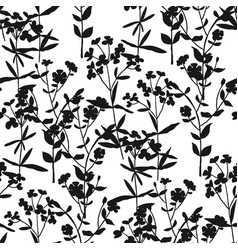 meadow blossom grass seamless pattern vector image