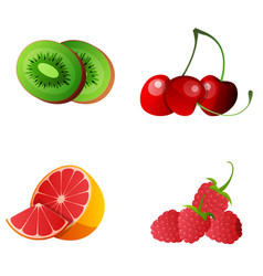 set whole and slice fruit for menu advertising vector image