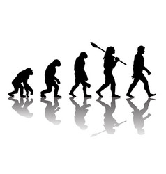 Theory of evolution of man vector
