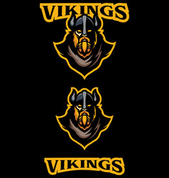 vikings team mascot vector image
