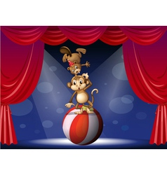 A beaver and a monkey perfoming on the stage vector