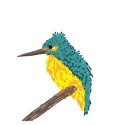 a small bird with a long beak sits on a branch vector image
