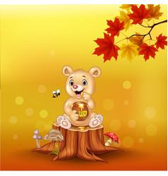cartoon babear holding honey pot on tree stump vector image