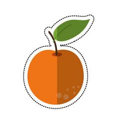 Cartoon orange citrus fruit icon vector