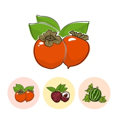 Fruit Icons Persimmon Lichee Watermelon vector