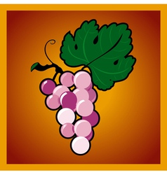Grape bunch on red background vector image