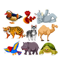 set of different animal character vector image