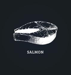 sketch of salmon steak in vector image