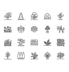 trees flat line icons set plants landscape vector image