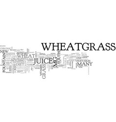 wheatgrass the new fountain of youth text word vector image