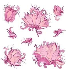 Pink Lotus Flowers Set vector image