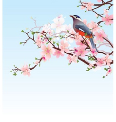 cherry tree vector image vector image