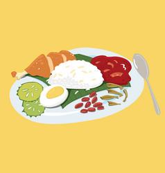 Colourful malaysian food nasi lemak vector