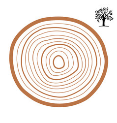 Cross-section of a tree abstract ring vector
