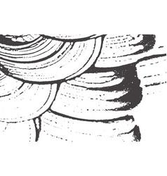 grunge texture distress black grey rough trace vector image