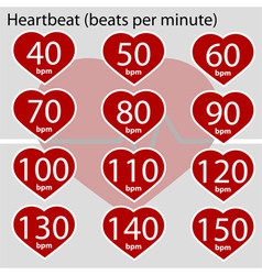 Heartbeat infographic vector image