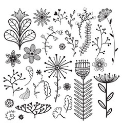 Nature collection with vector