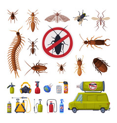 Pest control service set harmful insects vector