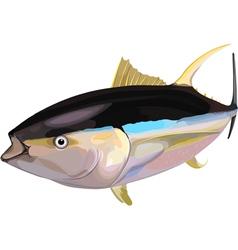 Tuna6 vector