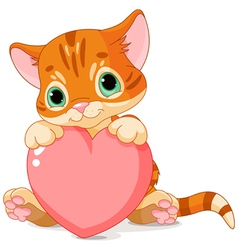 Valentines Day Kitten vector image vector image