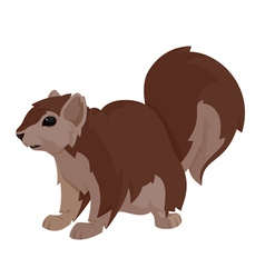 another squirrel vector image vector image