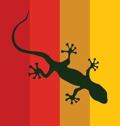 salamander on a color background vector image