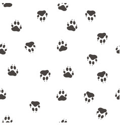 Impress the paws of a wolf vector