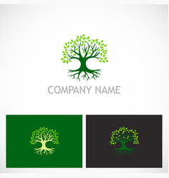 Tree nature botany logo vector