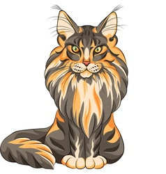 serios black and red cat Maine Coon vector image vector image