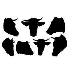 set of cow heads vector image vector image